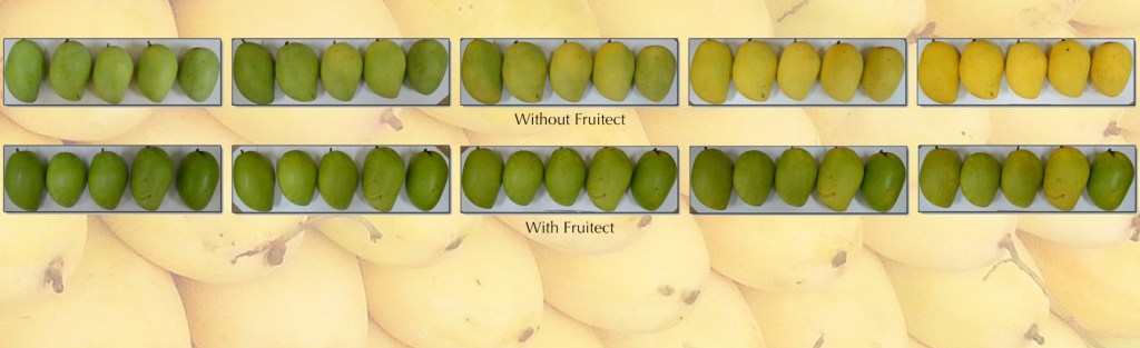 fruitect