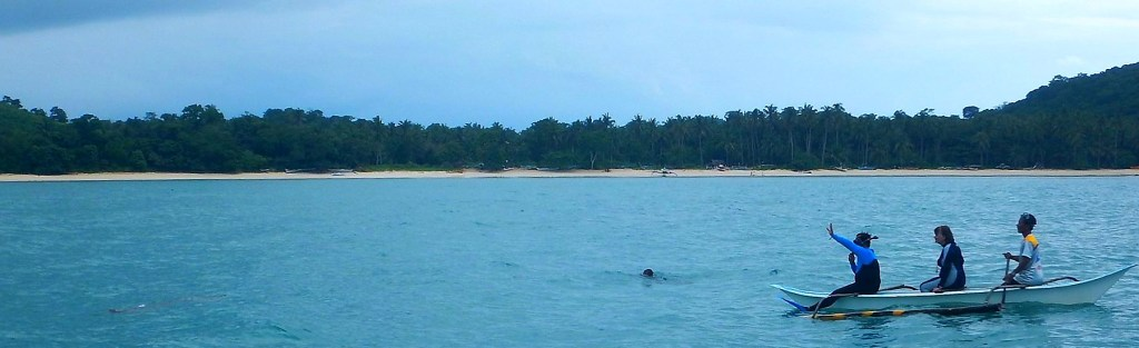 Swimming with the Dugongs banner