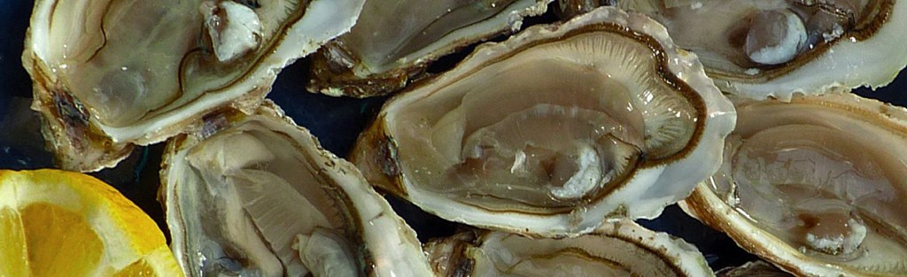 Oysters you can sprinkle