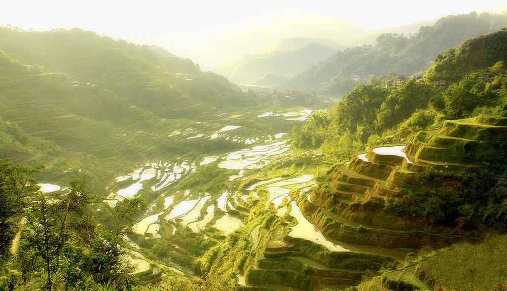 Terraced rice fields carved from the sides of mountains, done by indigenous Filipino communities over the last hundreds of years. Photo is a cultural heritage property in the Philippines with ID PH-15-0010. (Photo by Spiff2005, taken April 30, 2006. Source: Wikicommons, https://commons.wikimedia.org/wiki/File:The_Ifugao_Rice_Terraces.JPG)