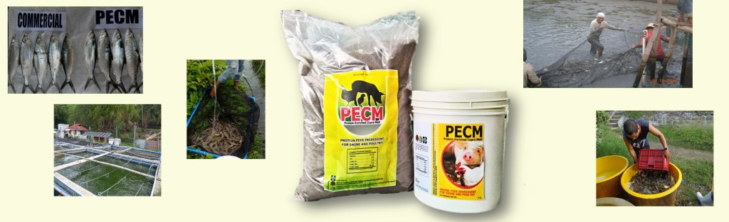 Protein Enriched Copra Meal