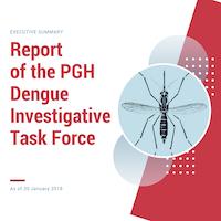 Executive Summary PGH-DITF_2 copy