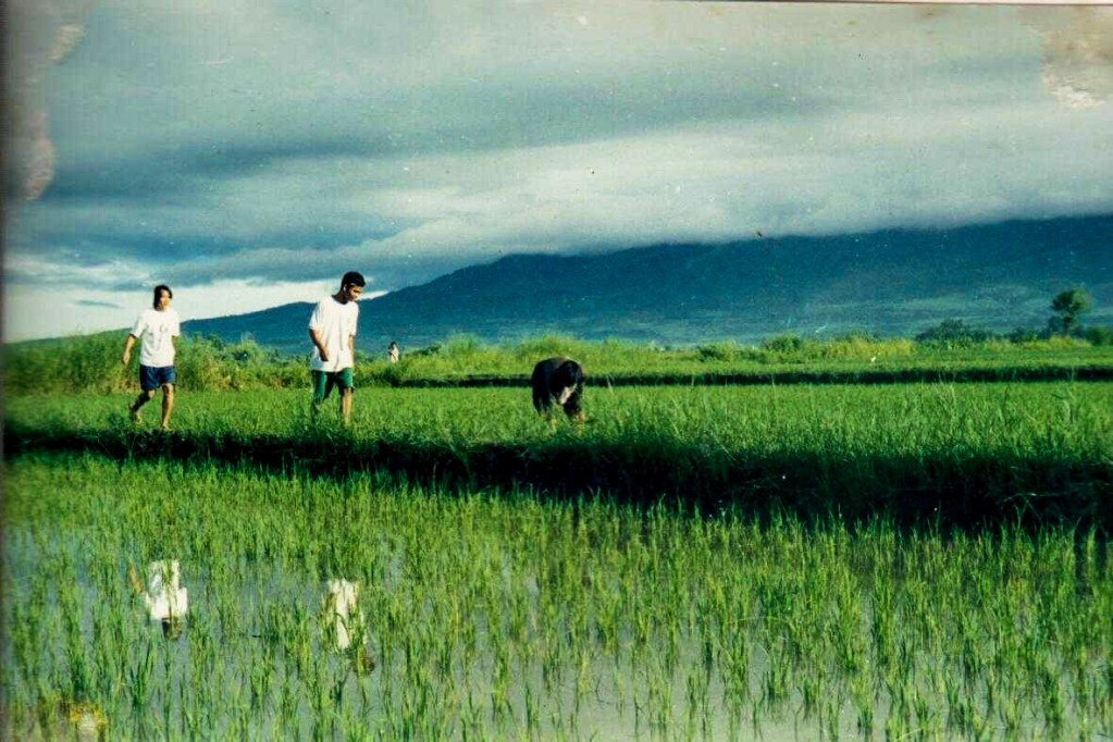 An old photo of Pahinungod volunteers going out into the fields to learn from the people they wish to serve. (Photo courtesy of UPLB Ugnayan ng Pahinungod)