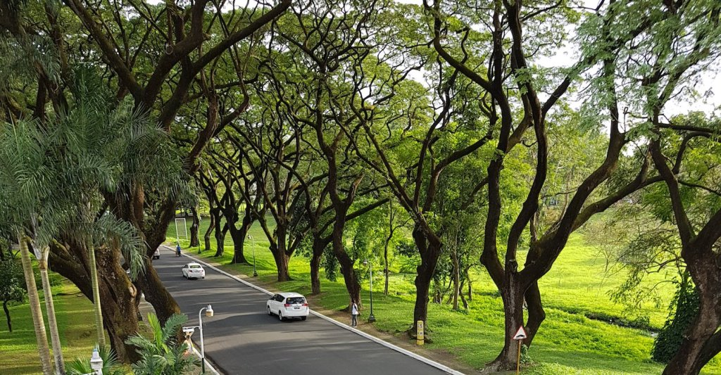 UP Diliman Academic Oval. (Photo by Arlyn VCD Romualdo, UP MPRO)