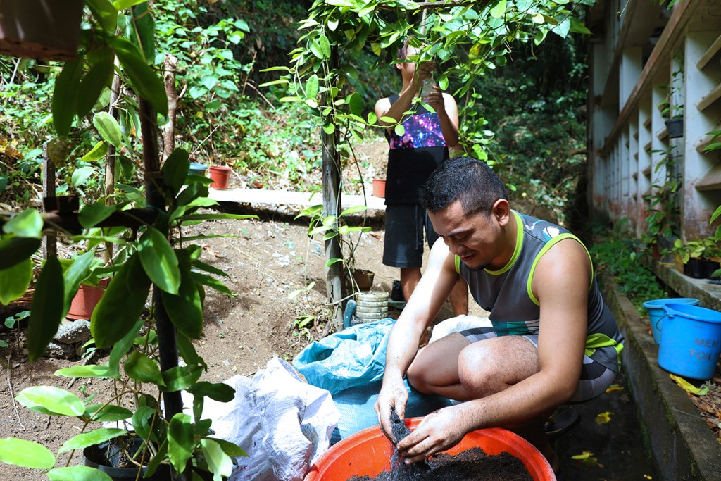 Joeseph Quisado may study insects for his PhD in Entomology but he seems to be good at horticulture, too. (Photo by Misael Bacani, UP MPRO)