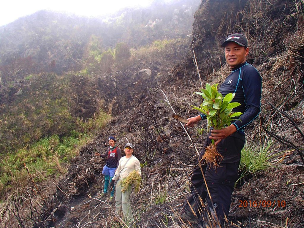 Green is Good: Mt. Apo reforestation effort of UP Mountaineers. (Photo by Romi Garduce)