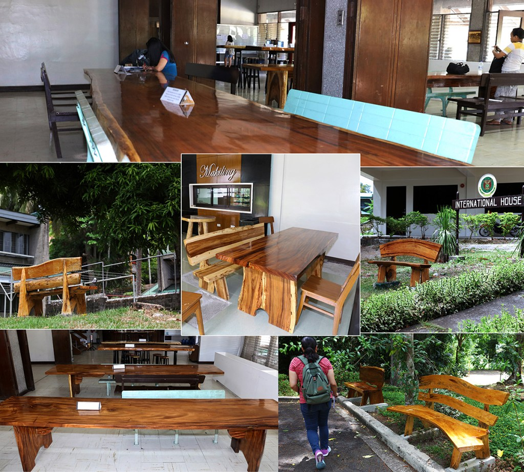 Some of the indoor and outdoor furniture created by the UPLB Housing Office skilled workers from trees felled by Typhoon Glenda (Photos by Misael Bacani, UP MPRO)