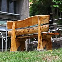 Repurposing typhoon-damaged trees