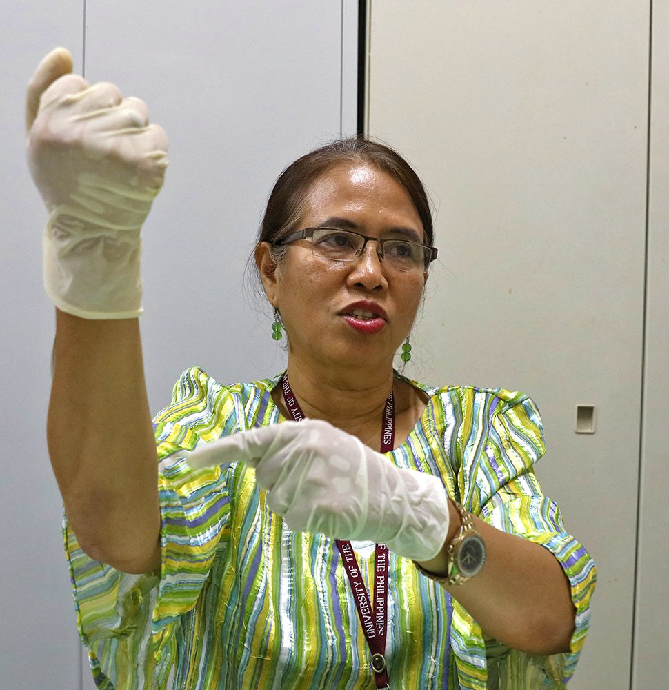 """""""The venom felt hot and I could feel it crawling up my arm.""""—Dr. Afuang on getting envenomated in Palawan. She wasn't bitten, but had gotten venom through a wound in her hand, trying to free a viper that was tied up by its captors. (Photo by Misael Bacani, UP MPRO)"""