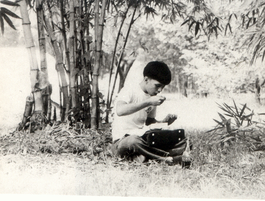 "Old photos of UP Baguio, UP Cebu, and UP Diliman, the last curiously captioned ""After a difficult exam,"" showing greenery integral to a healthy life on campus. (From UP MPRO file photos)"