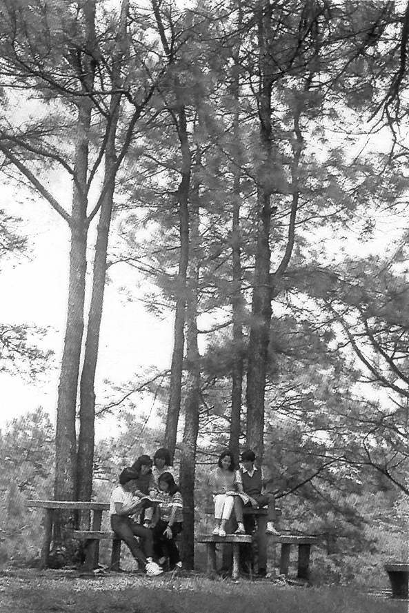 """Old photos of UP Baguio, UP Cebu, and UP Diliman, the last curiously captioned """"After a difficult exam,"""" showing greenery integral to a healthy life on campus. UP-MPRO file photos"""